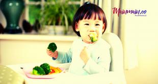 Daftar Nutrisi Penting Bagi Perkembangan Anak